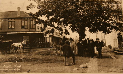 PHOTO: CVA STR. P 83 – MAY 1886 Maple Tree Square corner of Carrall and Water Street looking south. On the S.E. corner of Powell & Carrall Street is the first Ferguson Block built in 1885. In the centre of the photo is the famous Maple Tree which was destroyed in the Great Fire of 1886. It was under the Maple Tree that pioneers held meetings or impromptu concerts in the evenings. The Proclamation re the city's first election held on May 3, 1886 is posted on the tree.