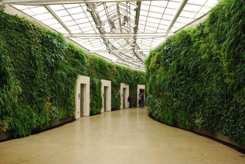 gsky-green-wall-pro-longwood-gardens-kennett-square-pennsylvania-1