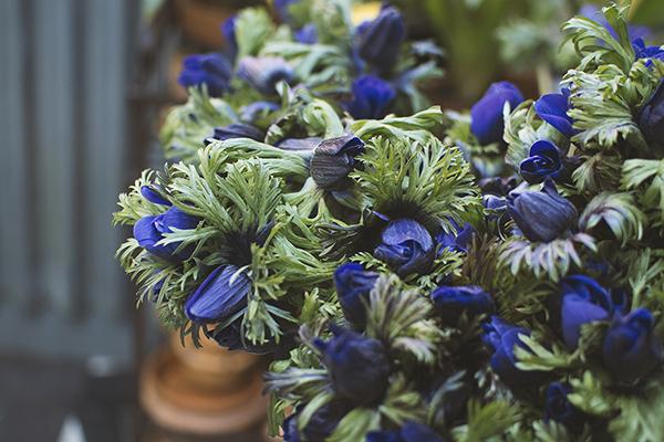 WeddingFl-blue1